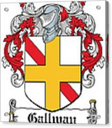 Gallway Coat Of Arms Irish Acrylic Print