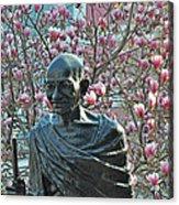Union Square Gandhi With Magnolias Acrylic Print
