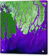 Ganges River Delta Acrylic Print