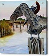 Gar Lake Pelican 2 Acrylic Print