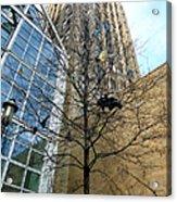 Garbage Tree Acrylic Print