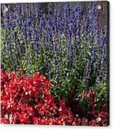 Garden At Yonah Mountain Acrylic Print