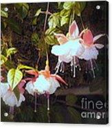 Garden Ballerinas Acrylic Print