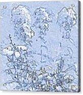 Garden Blue Acrylic Print by Diana  Tyson