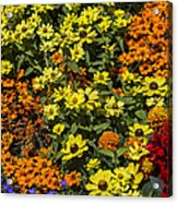 Garden Colors Acrylic Print