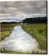 Garden Creek Acrylic Print