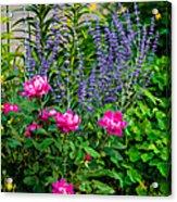 Garden Delights Acrylic Print