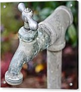 Garden Faucet Acrylic Print by Cathie Tyler