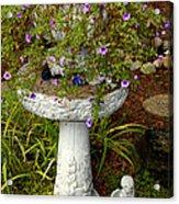 Garden Flowering Pot Acrylic Print