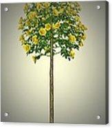 Garden Flowers 2 Acrylic Print