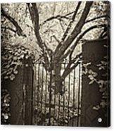 Garden Gate Acrylic Print