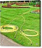 Garden Hosepipes Acrylic Print