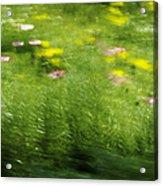 Garden Impressions Acrylic Print