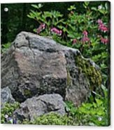 Garden Of Choice Acrylic Print