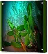 Garden Of Eden Light Acrylic Print