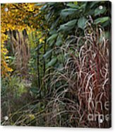 Garden Room With Golden Portal Acrylic Print