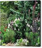 Garden Spread Acrylic Print