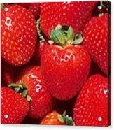 Garden Strawberries Acrylic Print