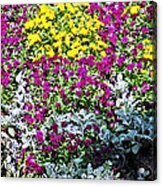 Garden Variety Acrylic Print