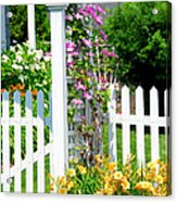 Garden With Picket Fence Acrylic Print