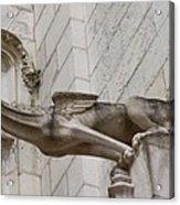 Gargoyle Cathedral Tours Acrylic Print