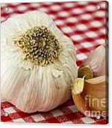 Garlic Acrylic Print by Blink Images