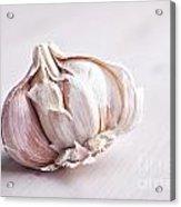 Garlic Bulb Acrylic Print