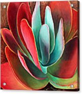 Garnet Jewel Acrylic Print