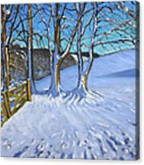 Gate And Trees Winter Dam Lane Derbyshire Acrylic Print