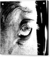 Gate Expression Acrylic Print