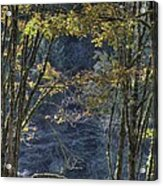 Gate Way To The Winters Forest Acrylic Print