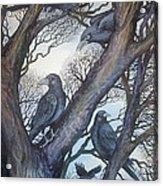 Gathering A Murder Of Crows II Acrylic Print by Helen Klebesadel