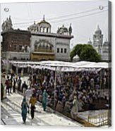 Gathering Inside The Golden Temple In Amritsar Acrylic Print