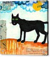 Gato Mexico Acrylic Print
