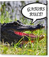 Gators Rule Greeting Card Acrylic Print by Al Powell Photography USA