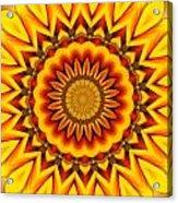 Gazania Kaleidoscope Acrylic Print