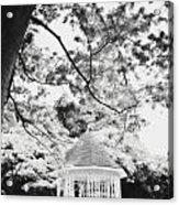 Gazebo In Monochrome Acrylic Print