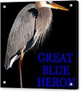 Gbh Bird Educational Work A Acrylic Print