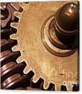 Gear Wheels Acrylic Print by Carlos Caetano