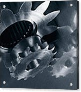 Gears And Cogs Mirrored In Titanium Acrylic Print