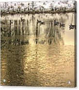Geese On Golden Pond Acrylic Print