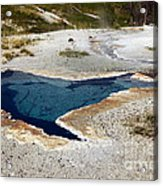Geiser In Yellowstone Acrylic Print