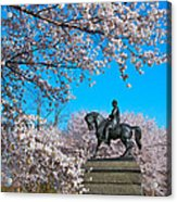General In The Cherry Blossoms Acrylic Print