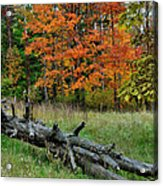 Generations Past And Present Acrylic Print