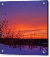 Genesis Dawn Acrylic Print