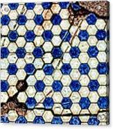 Geographic Tile Acrylic Print