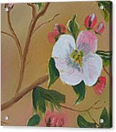 Georgia Flowers - Apple Blossoms- Stretched Acrylic Print