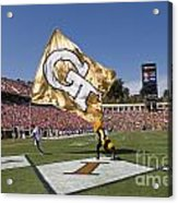 Georgia Tech Touchdown Celebration At Uva Acrylic Print