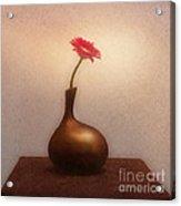 Gerbera In Gold Vase Acrylic Print