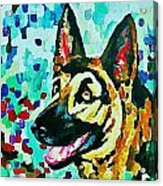 German Shepard Watercolor Acrylic Print